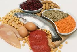 fontes de proteina