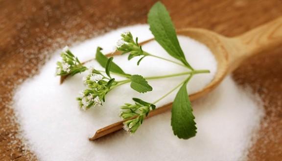 stevia-adocante