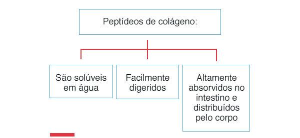 collagens-nutris-06