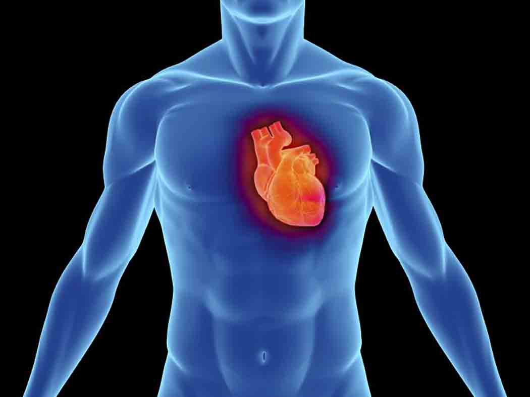 reposição-de-testosterona-e-doenças-cardiovasculares